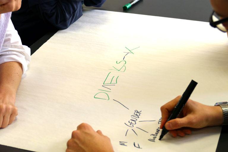 Diversitäts-Mindmaps in Gruppen erstellen (EiP Training II, Budapest, Februar 2019)